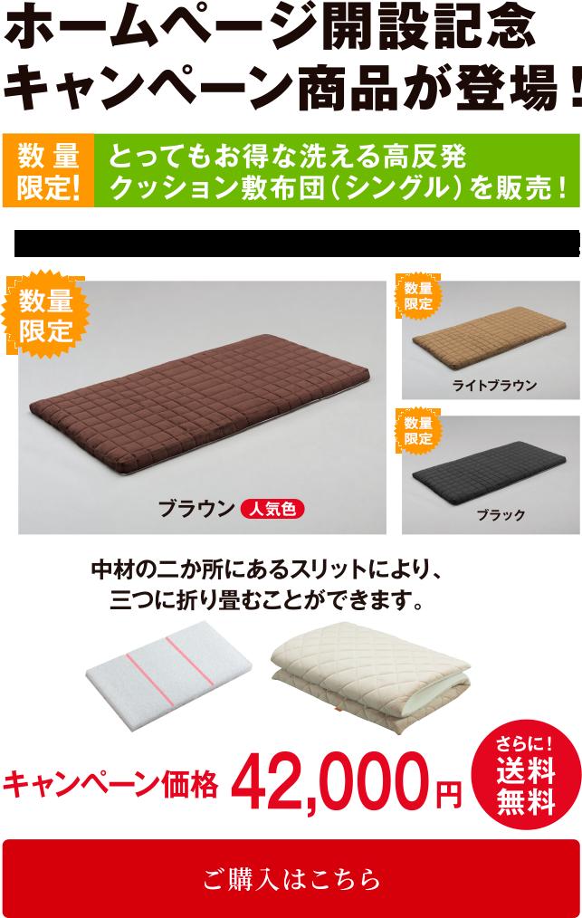 ホームページ開設記念キャンペーン商品が登場!